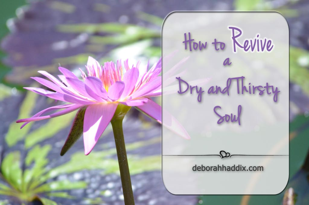 How to Revive a Dry and Thirsty Soul